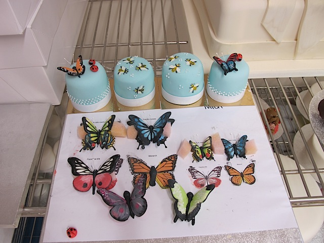 Mich-Turner-Little-Venice-Cake-Company-painted-butterflies
