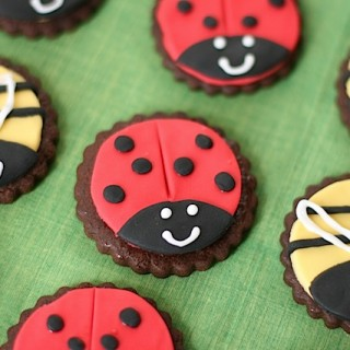 (Lady)Birds and Bees cookies (National AIDS Trust)