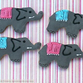 Elephant cookies (Experience Days)