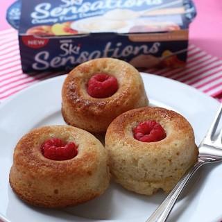 Berry Baked Doughnuts (Ski)