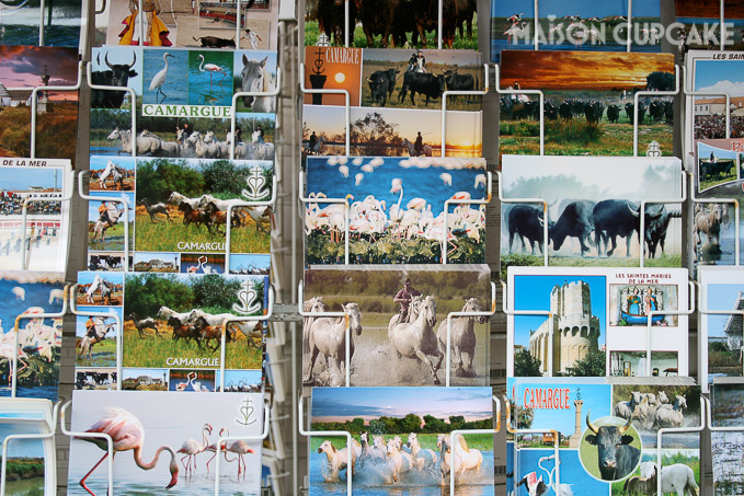 Camargue Postcards for sale in France