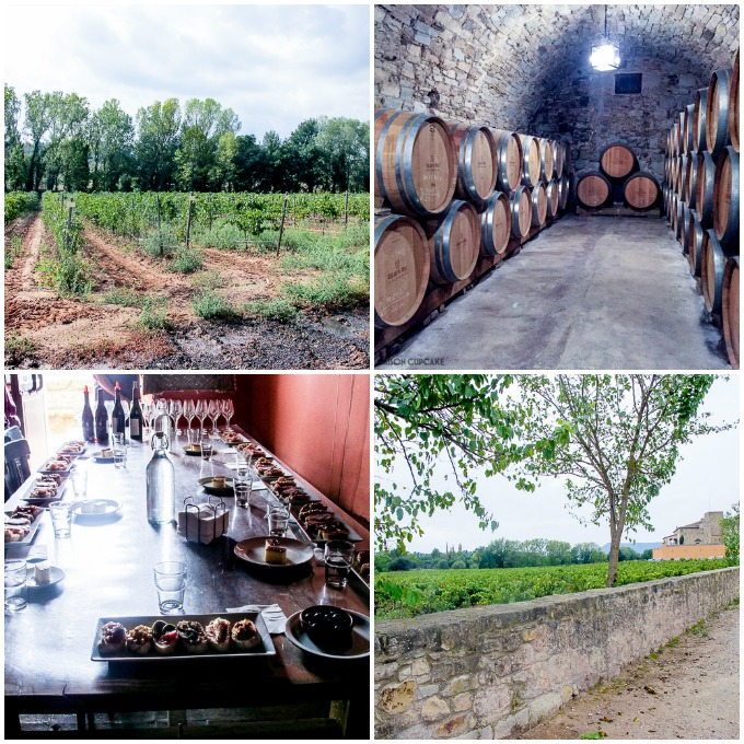 Winery visit Oller des Mas Barcelona Castle Experience