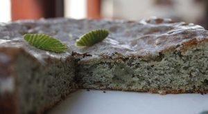 BOTW-spirulina-Lime-Cake