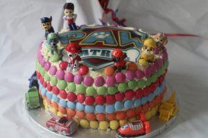 botw-Paw patrol birthday cake