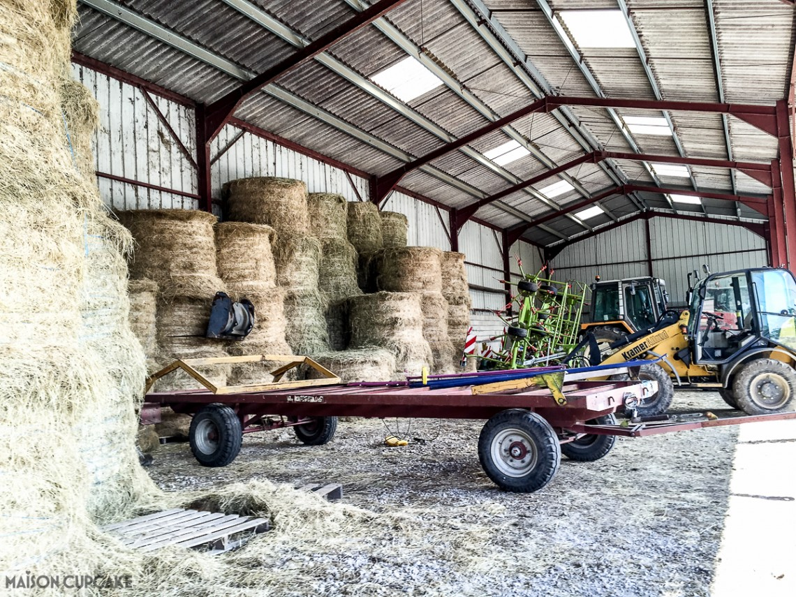 Barns to be loaded with hay bales to feed the cows throughout winter.
