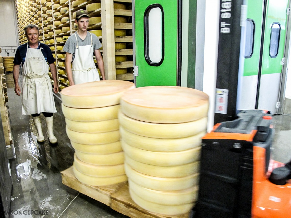 Young wheels of Comte cheese at a Franche Comte dairy